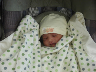 A Collection of Birth Stories - Vimna